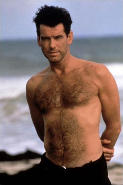 pierce brosnan gay